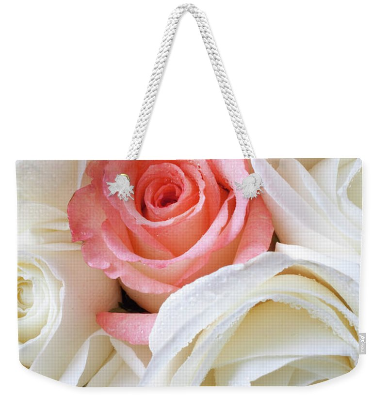 Pink Rose White Roses Weekender Tote Bag featuring the photograph Pink Rose Among White Roses by Garry Gay
