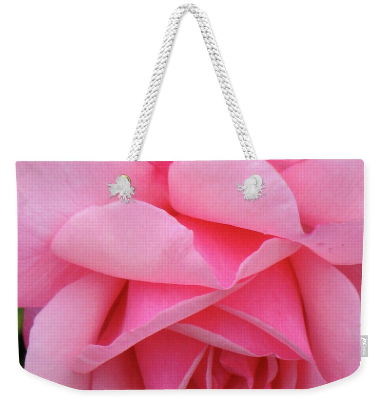 Close-up Photo Photography Flower Plant Pink Rose Weekender Tote Bag featuring the photograph Pink Rose by Christina Geiger