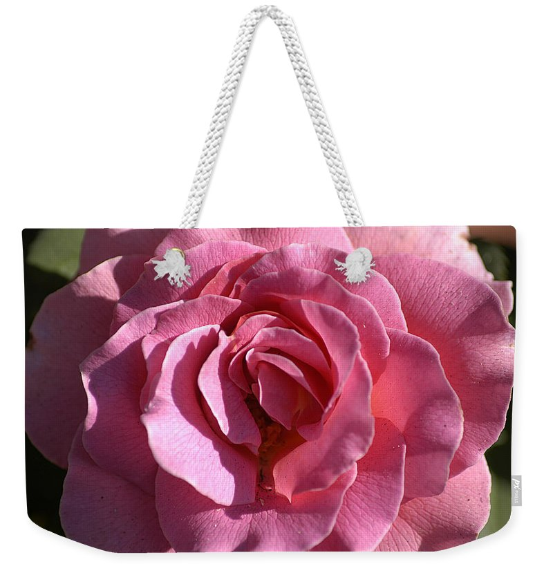 Clay Weekender Tote Bag featuring the photograph Pink Rose by Clayton Bruster