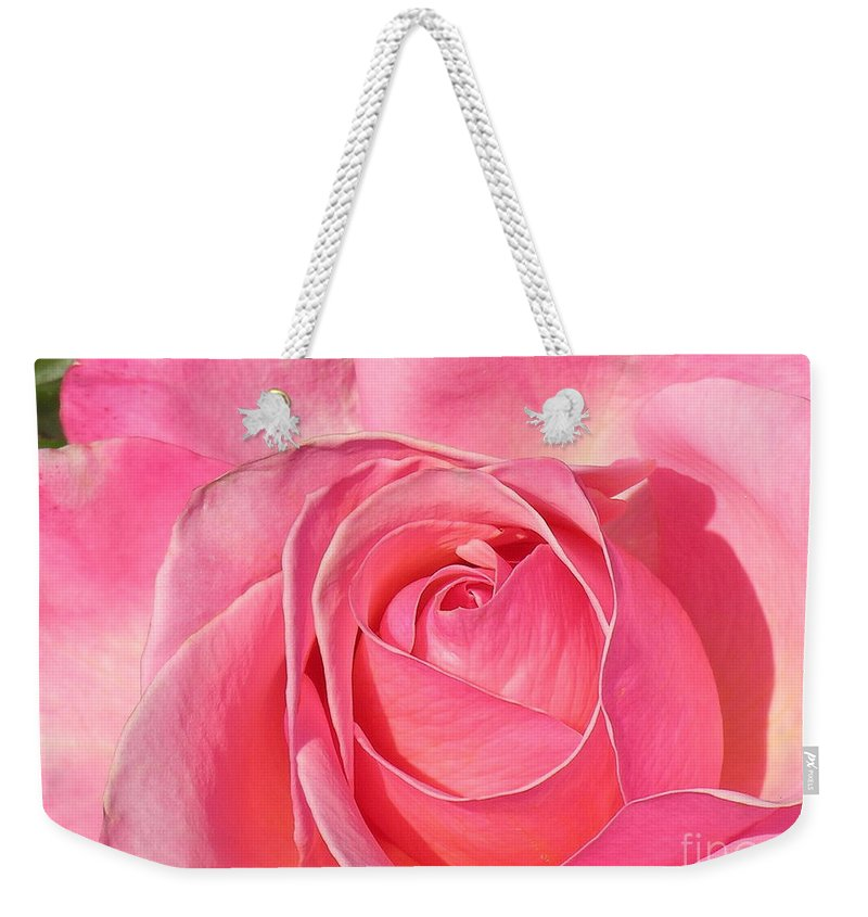Canvas Print Weekender Tote Bag featuring the photograph Pink Rose by Diane Greco-Lesser