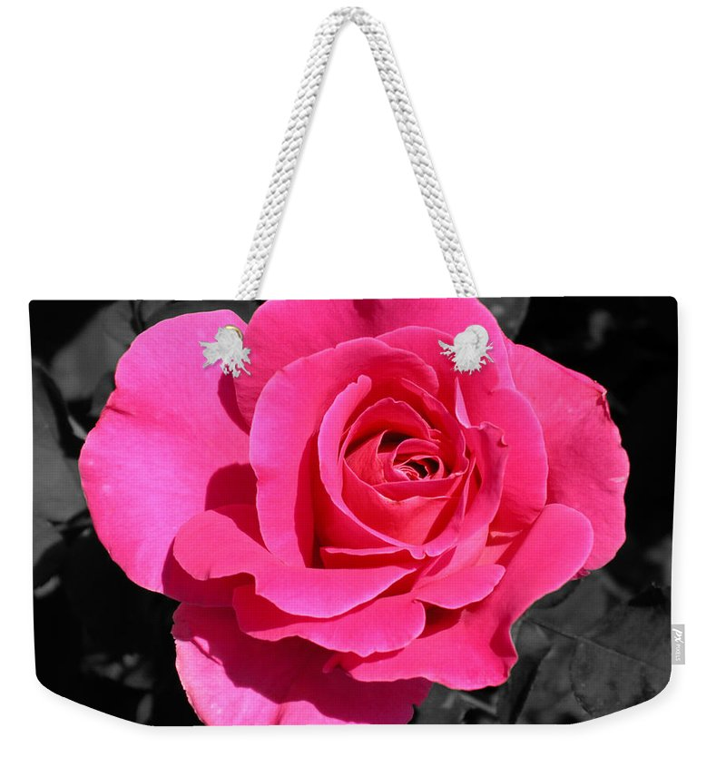 Pink Weekender Tote Bag featuring the photograph Perfect Pink Rose by Michael Bessler