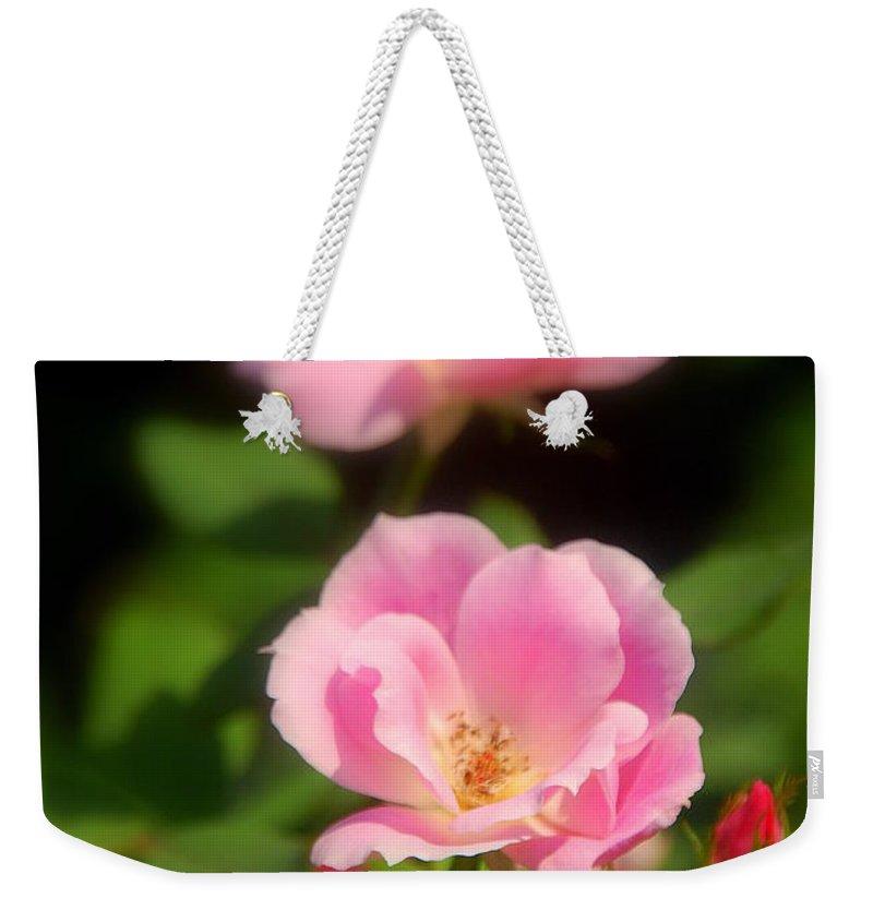 Pink Rose Weekender Tote Bag featuring the photograph Pink Rose by Susanne Van Hulst