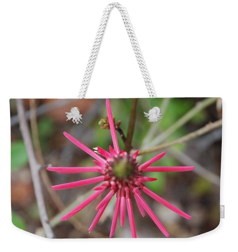 Flower Weekender Tote Bag featuring the photograph Pink Spikes by Rob Hans
