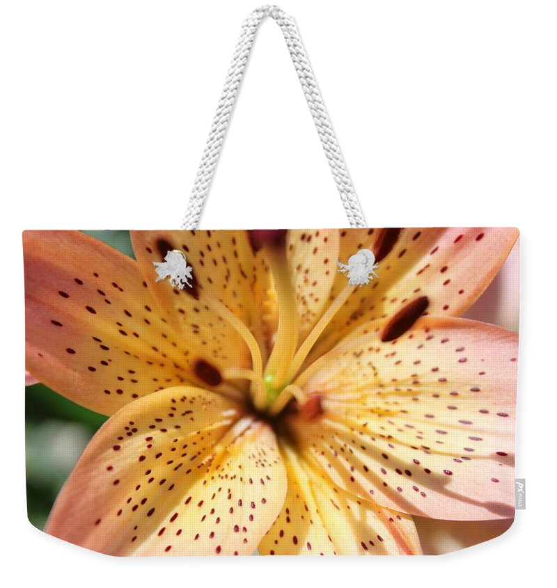 Lilly Weekender Tote Bag featuring the photograph Pink Spotted Lilly by Lauri Novak