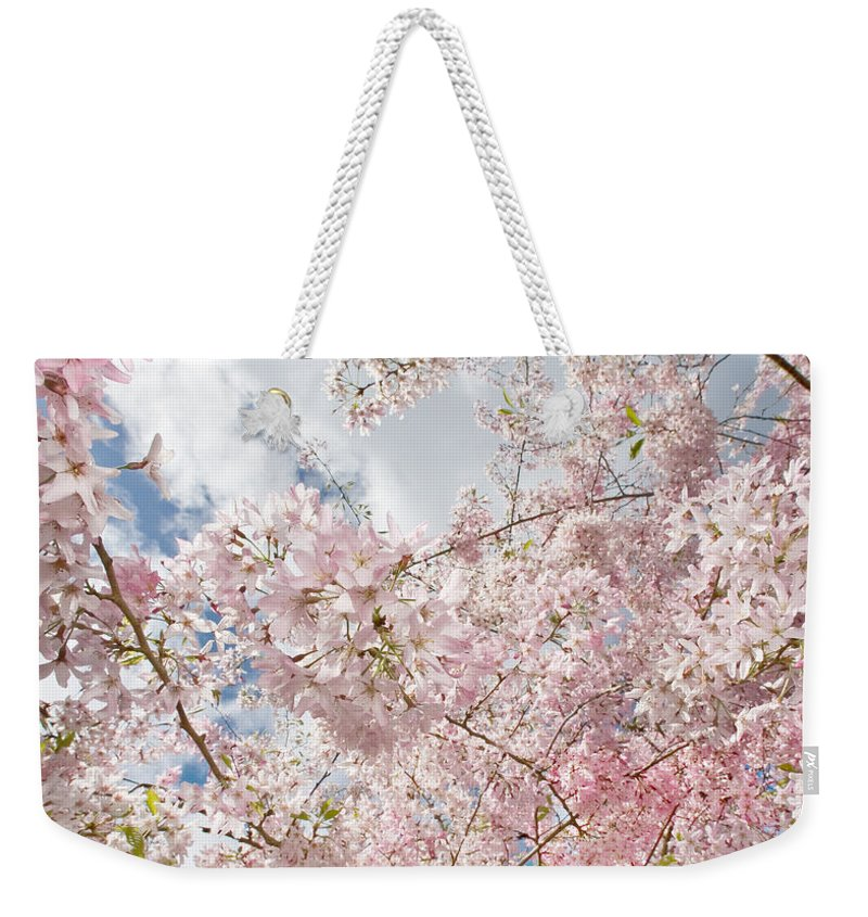 Spring Weekender Tote Bag featuring the photograph Pink Spring by Daniel Furon