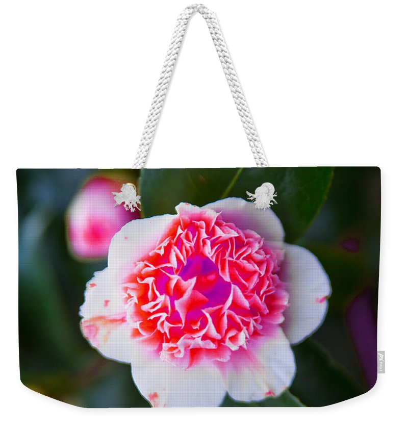 Pink Weekender Tote Bag featuring the photograph Pink Tenderness by Alex Art and Photo