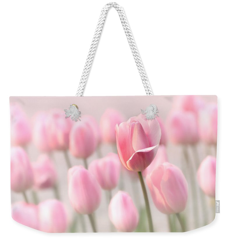 Tulip Weekender Tote Bag featuring the photograph Pink Tulip Cloud by Mary Jo Allen