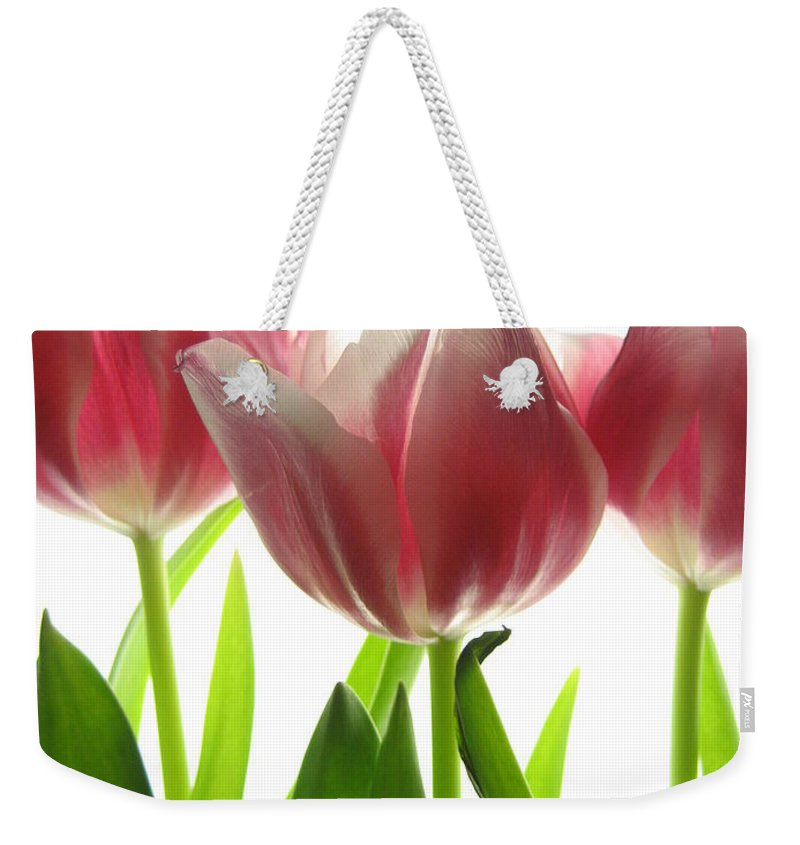 Tulip Weekender Tote Bag featuring the photograph Pink Tulips by Jane Linders