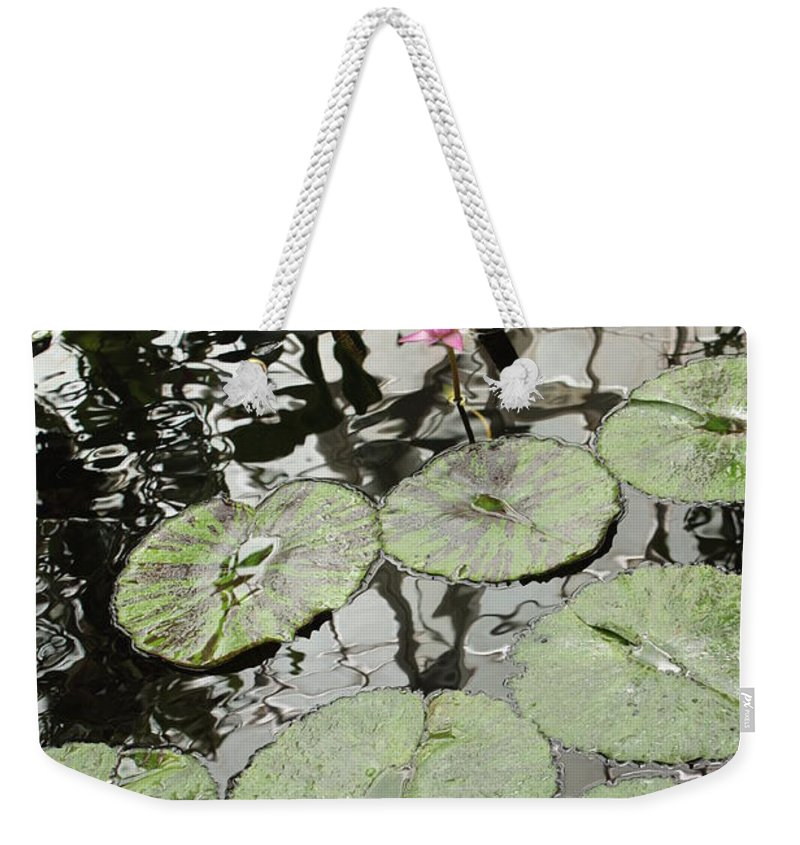 Ond Weekender Tote Bag featuring the photograph Pink Water Lily by Carol Groenen