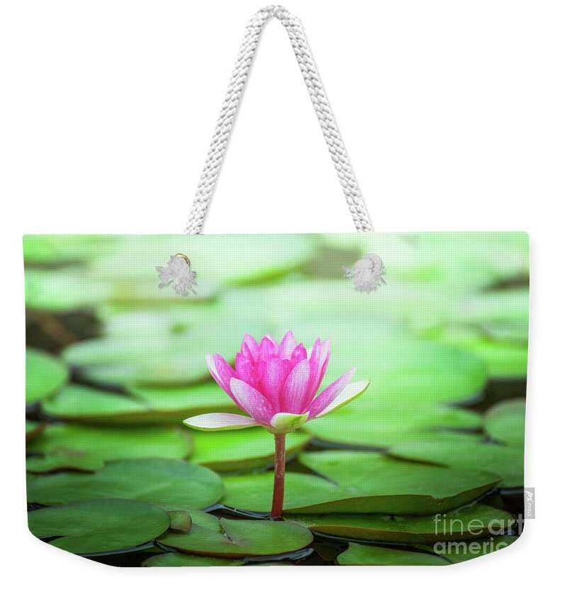 Aquatic Weekender Tote Bag featuring the photograph Pink Water Lily by Leslie Banks
