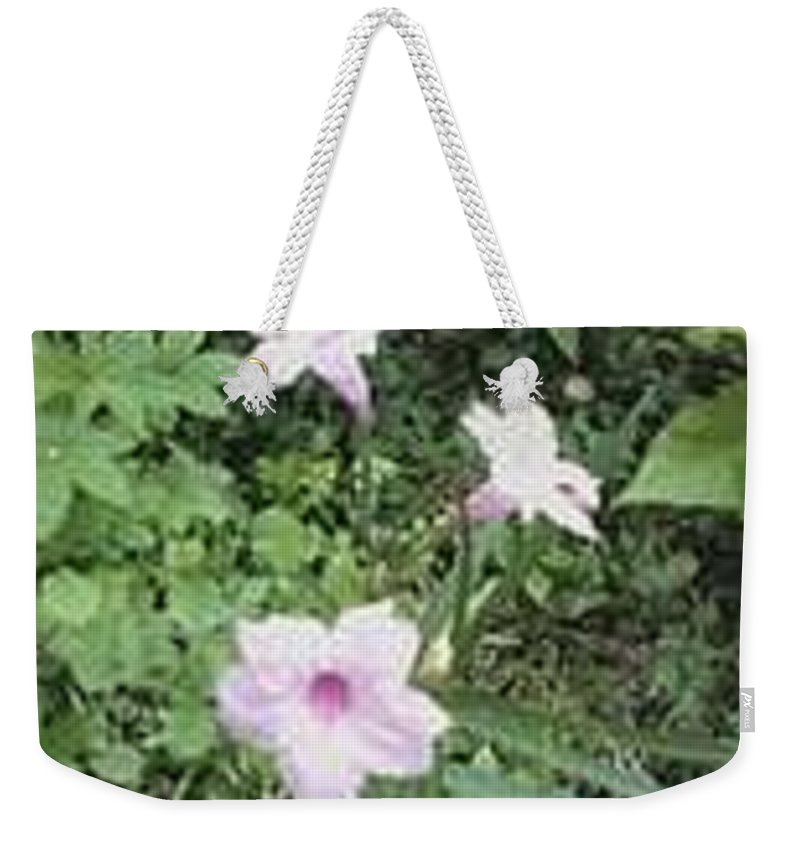 Pink And Purple Flowers Weekender Tote Bag featuring the photograph Pinkies by R Chambers
