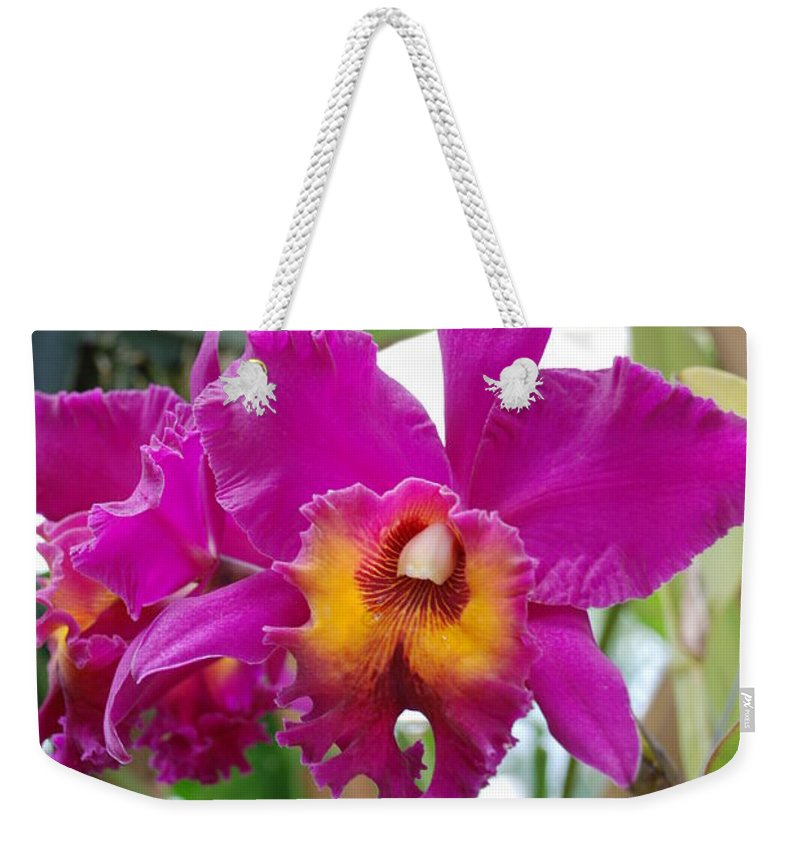 Macro Weekender Tote Bag featuring the photograph Pinkishyellow Orchid by Rob Hans