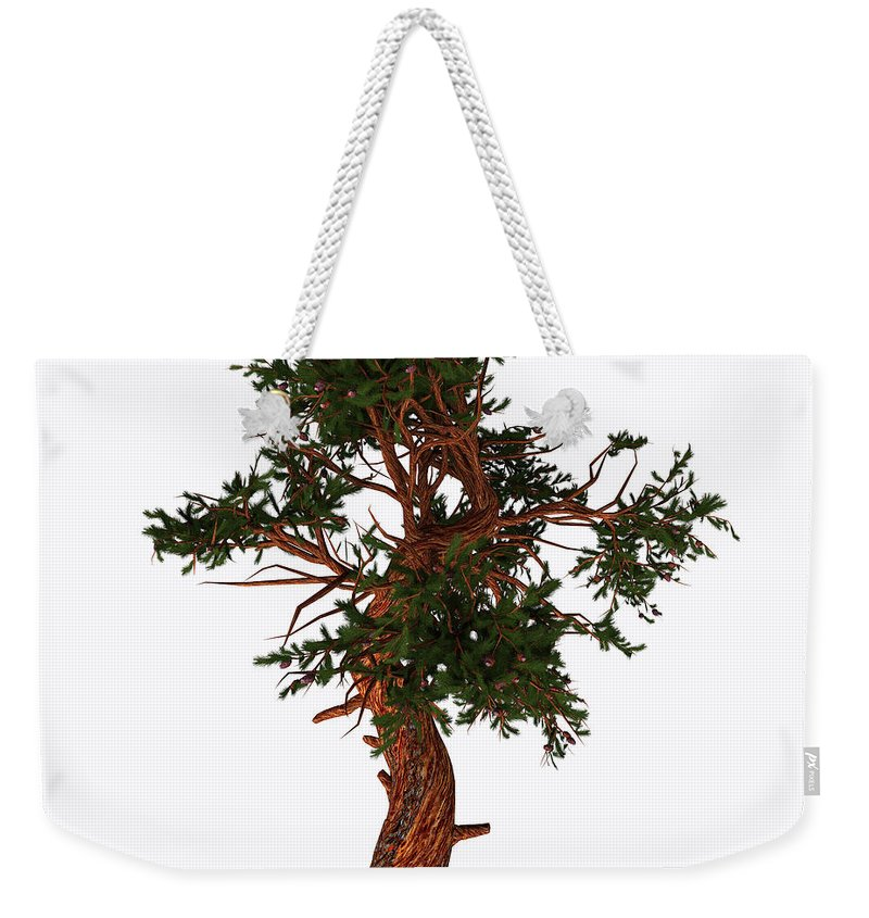 3d Illustration Weekender Tote Bag featuring the painting Pinus Aristata Tree by Corey Ford