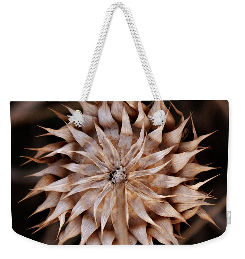 Back Weekender Tote Bag featuring the photograph Pinwheel by Marilyn Hunt