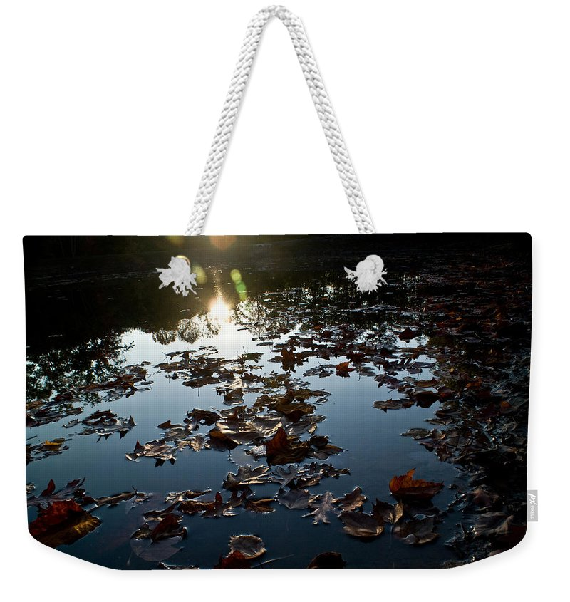 Placid Weekender Tote Bag featuring the photograph Placid by Douglas Barnett
