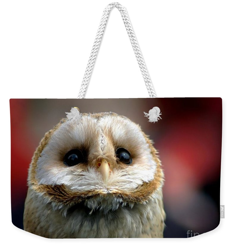 Wildlife Weekender Tote Bag featuring the photograph Please by Jacky Gerritsen