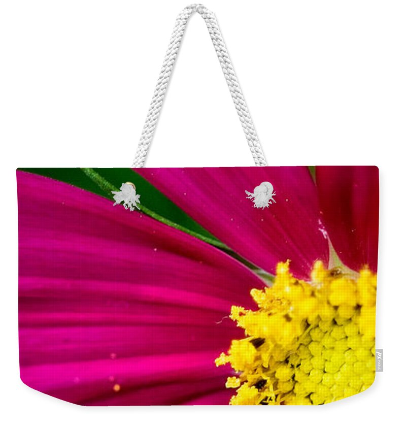 Plink Weekender Tote Bag featuring the photograph Plink Flower Closeup by Michael Bessler