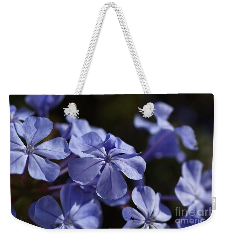 Blue Weekender Tote Bag featuring the photograph Plumbago Dance by Joy Watson