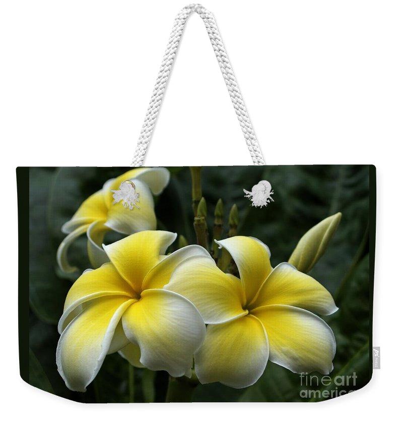 Plumeria Weekender Tote Bag featuring the photograph Plumeria by Ann Horn