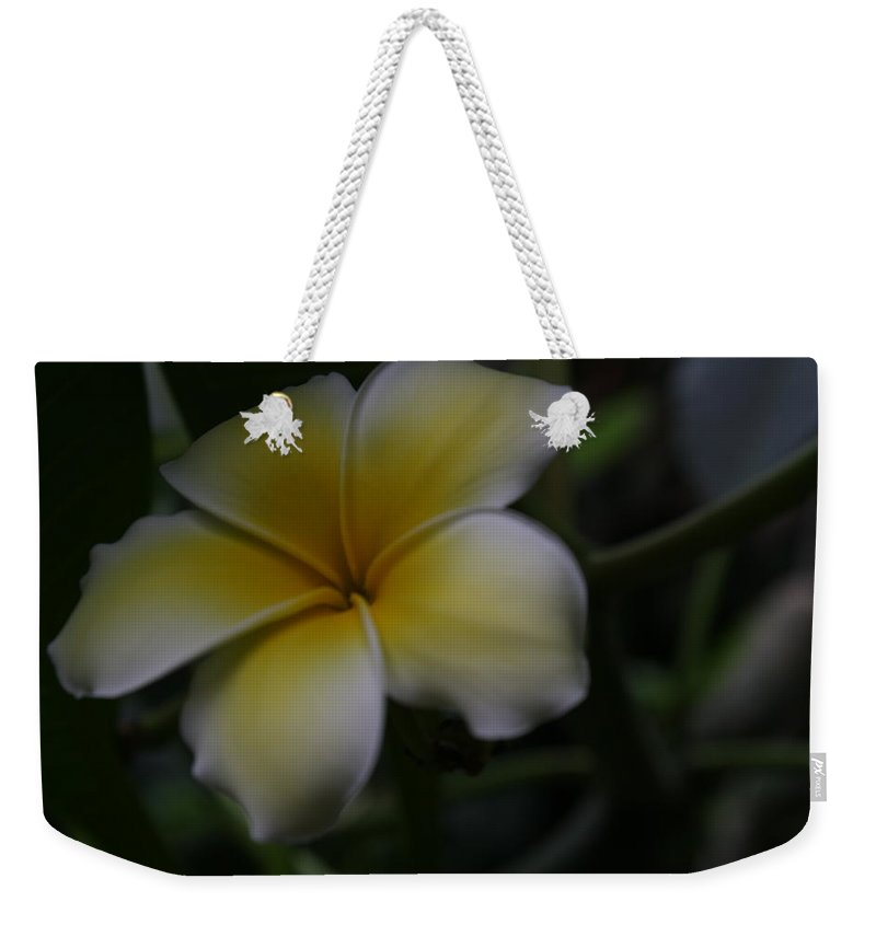 Flower Weekender Tote Bag featuring the photograph Plumeria by Paul Borden