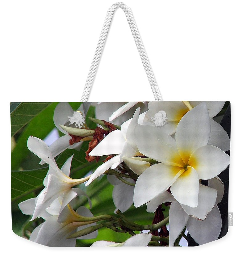 Flower Weekender Tote Bag featuring the photograph Plumeria by Robert Meanor