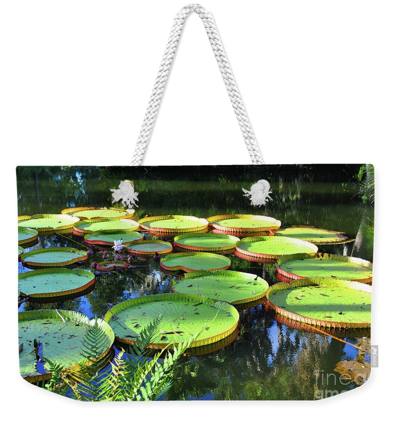 Pods Weekender Tote Bag featuring the photograph Pods Of The Pond by Jost Houk