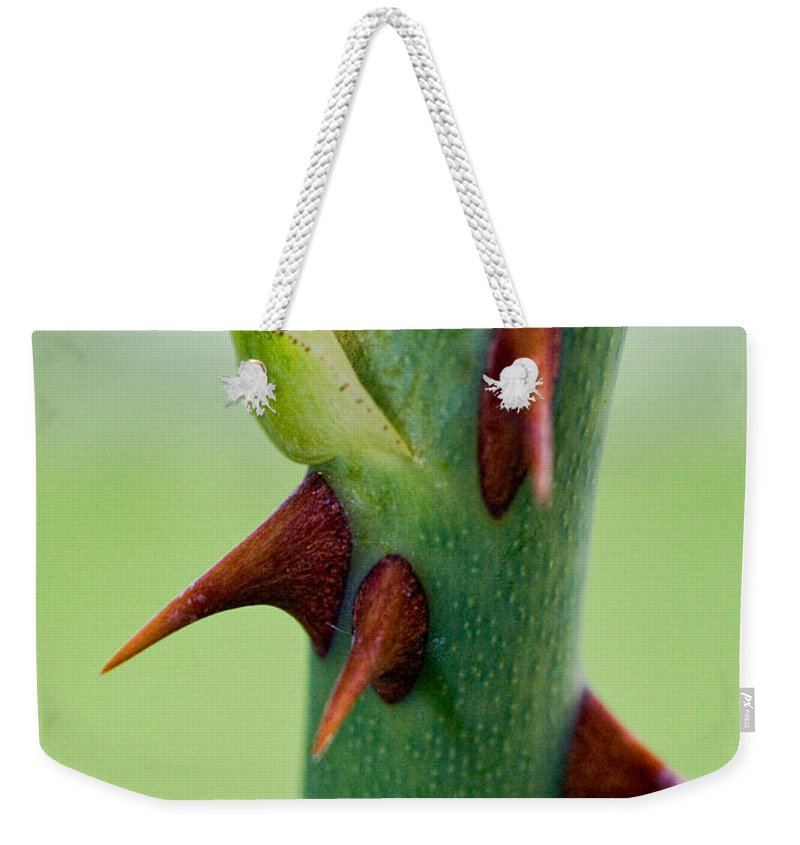 Thorns Weekender Tote Bag featuring the photograph Pointed Personality by Christopher Holmes