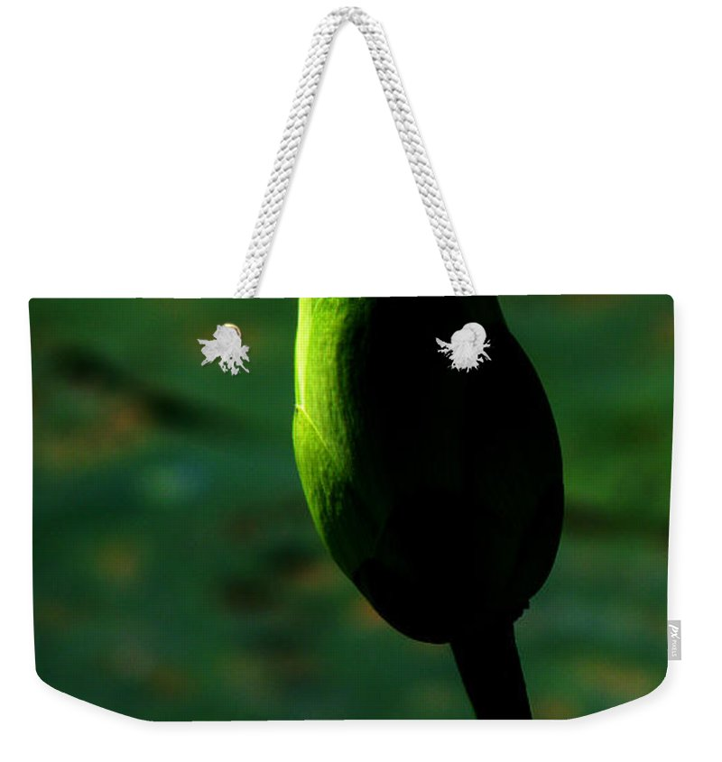 Lotus Weekender Tote Bag featuring the photograph Poised For Greatness by Amanda Barcon