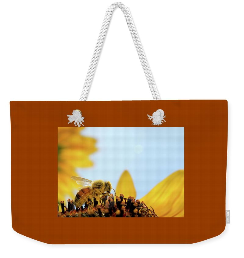 Macro Landscape Weekender Tote Bag featuring the photograph Pollen-coated Honey Bee On A Sunflower by Roger Medbery