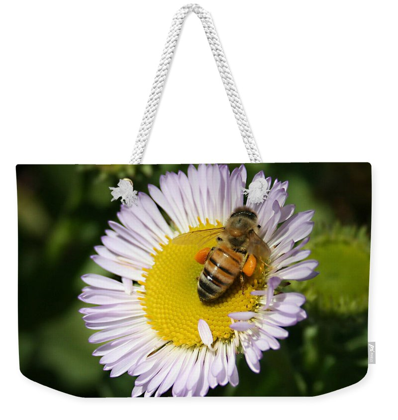 Pollen Harvest Weekender Tote Bag featuring the photograph Pollen Harvest by Ellen Henneke