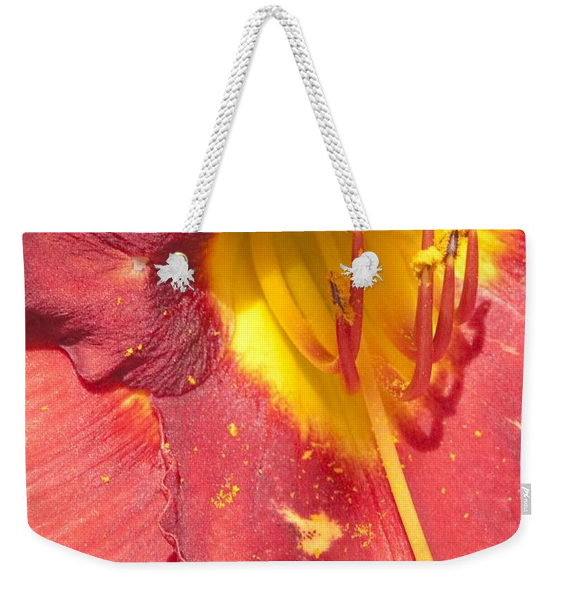 Pollen Weekender Tote Bag featuring the photograph Pollen by Steven Natanson