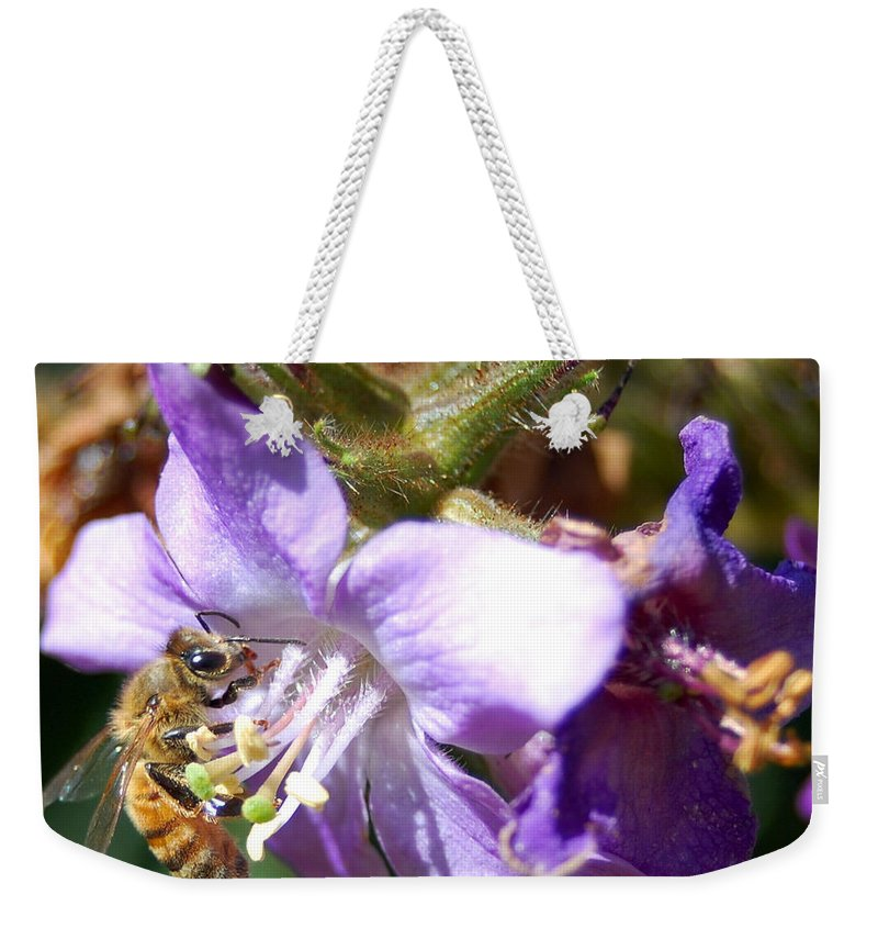 Bee Weekender Tote Bag featuring the photograph Pollinating 1 by Amy Fose