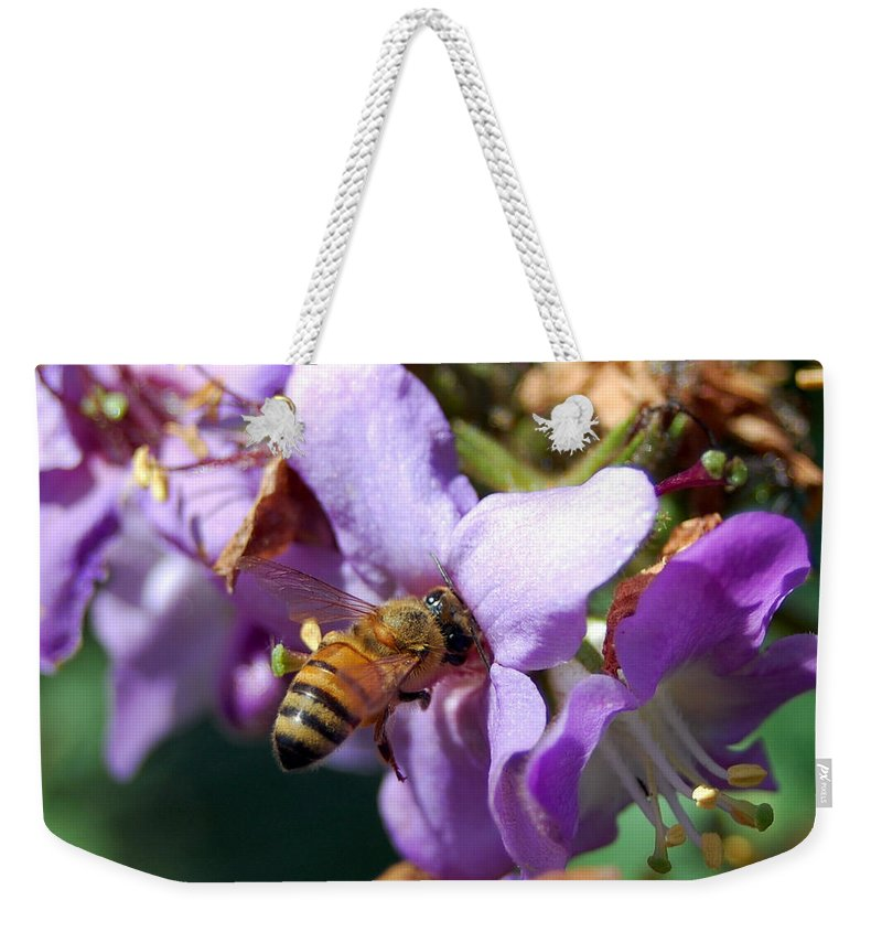 Flower Weekender Tote Bag featuring the photograph Pollinating 2 by Amy Fose