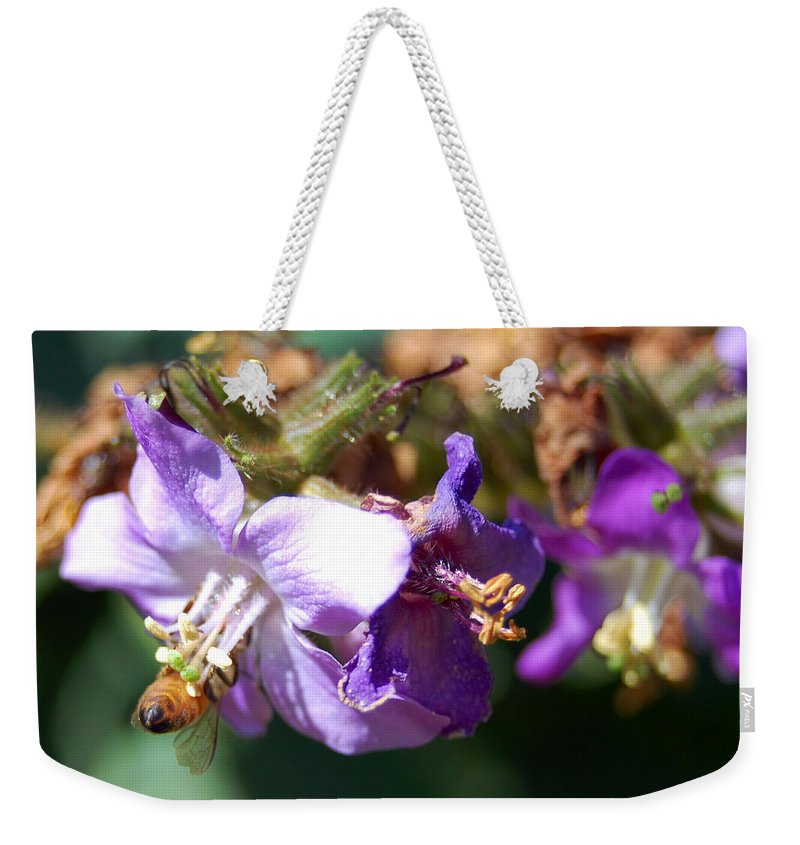 Bee Weekender Tote Bag featuring the photograph Pollinating 3 by Amy Fose