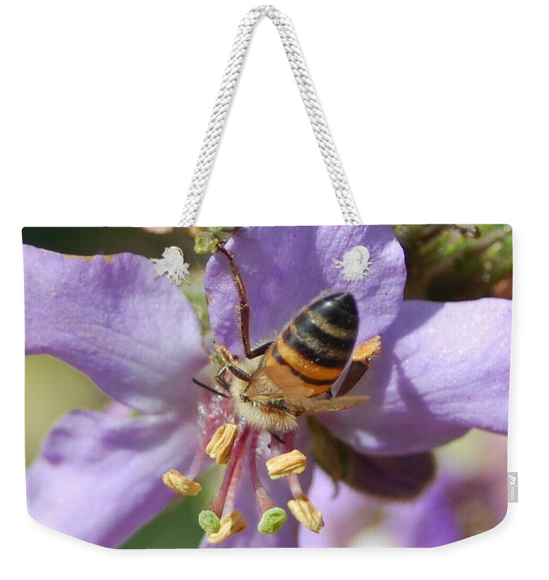 Bees Weekender Tote Bag featuring the photograph Pollinating 4 by Amy Fose