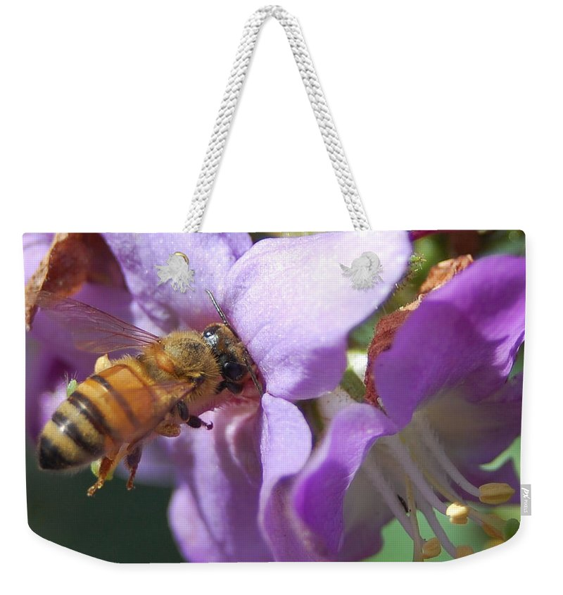 Bee Weekender Tote Bag featuring the photograph Pollinating 5 by Amy Fose