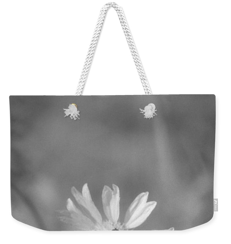 Pollinate Weekender Tote Bag featuring the photograph Pollination by Richard Rizzo