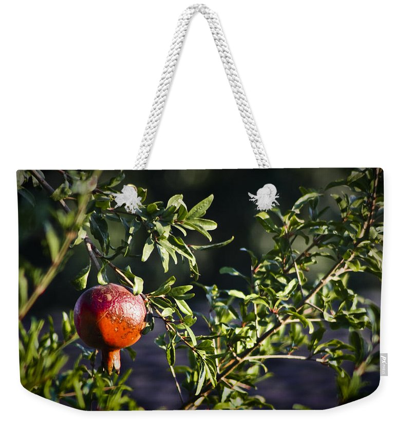 Pomegranate Weekender Tote Bag featuring the photograph Pomegranate by Teresa Mucha
