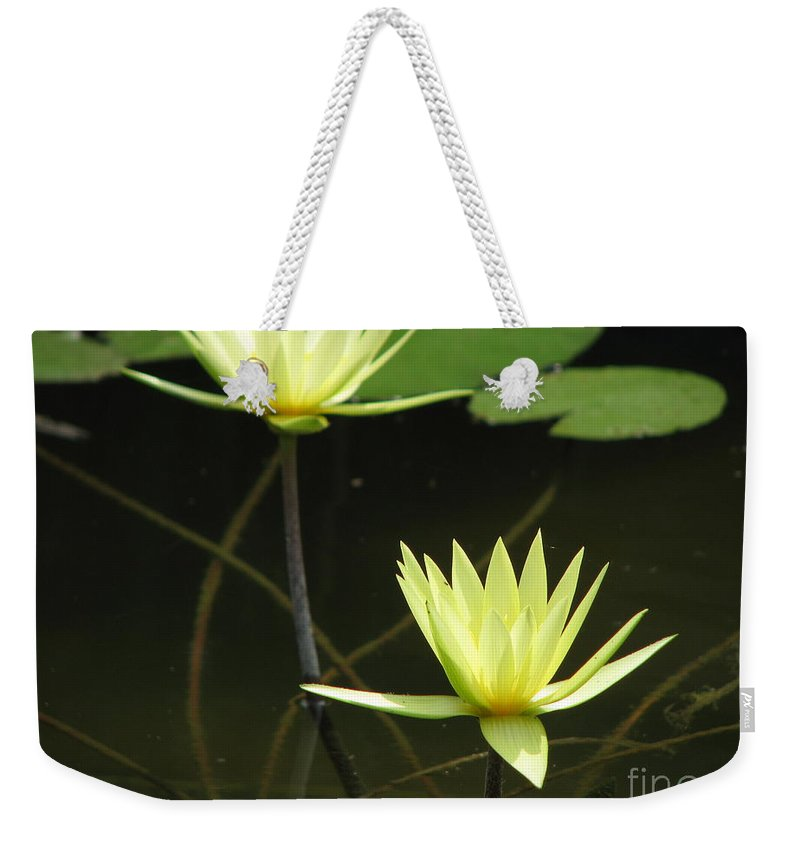 Pond Weekender Tote Bag featuring the photograph Pond by Amanda Barcon