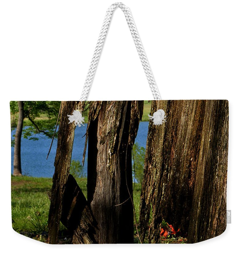 Landscape Weekender Tote Bag featuring the photograph Pond Fragments by Rachel Christine Nowicki
