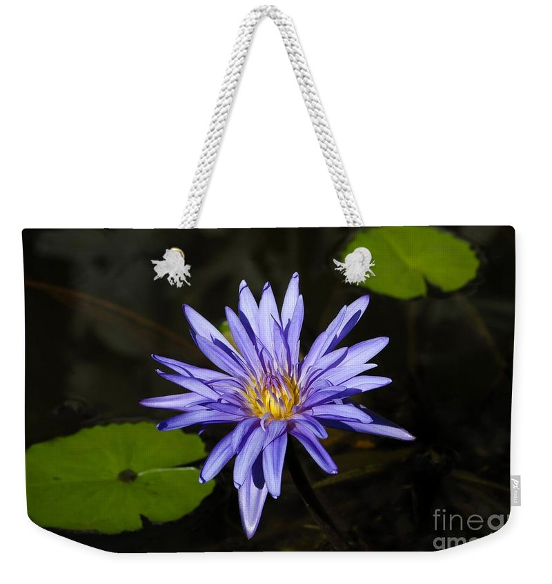 Pond Lily Weekender Tote Bag featuring the photograph Pond Lily by David Lee Thompson