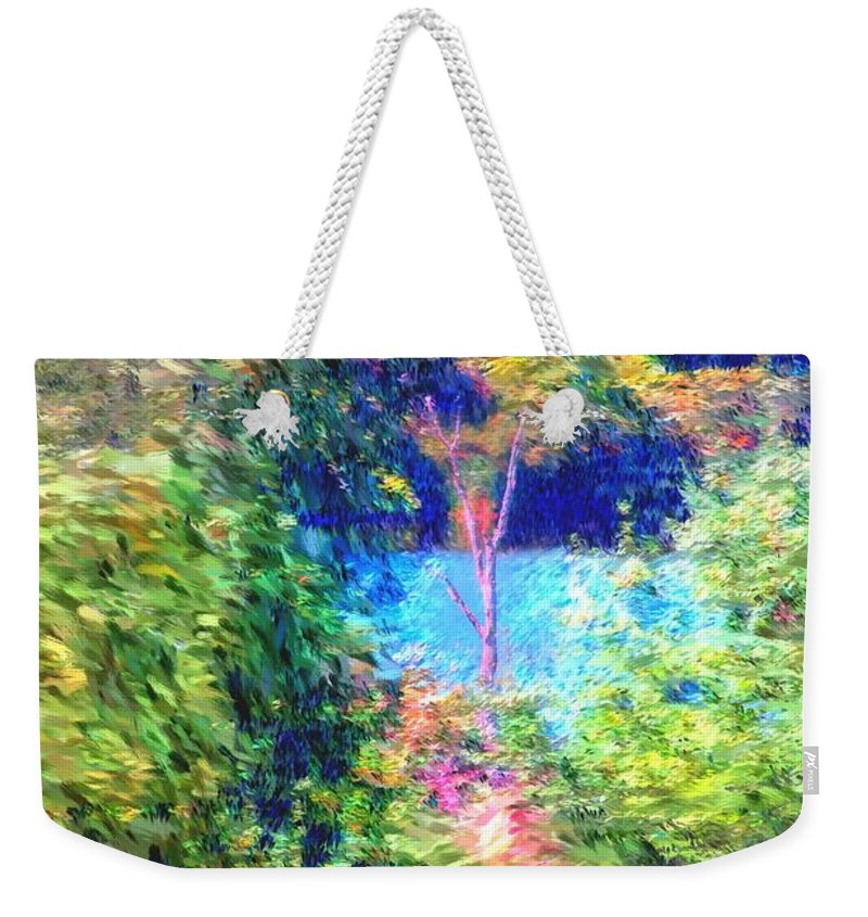 Digital Photograph Weekender Tote Bag featuring the photograph Pond Overlook by David Lane