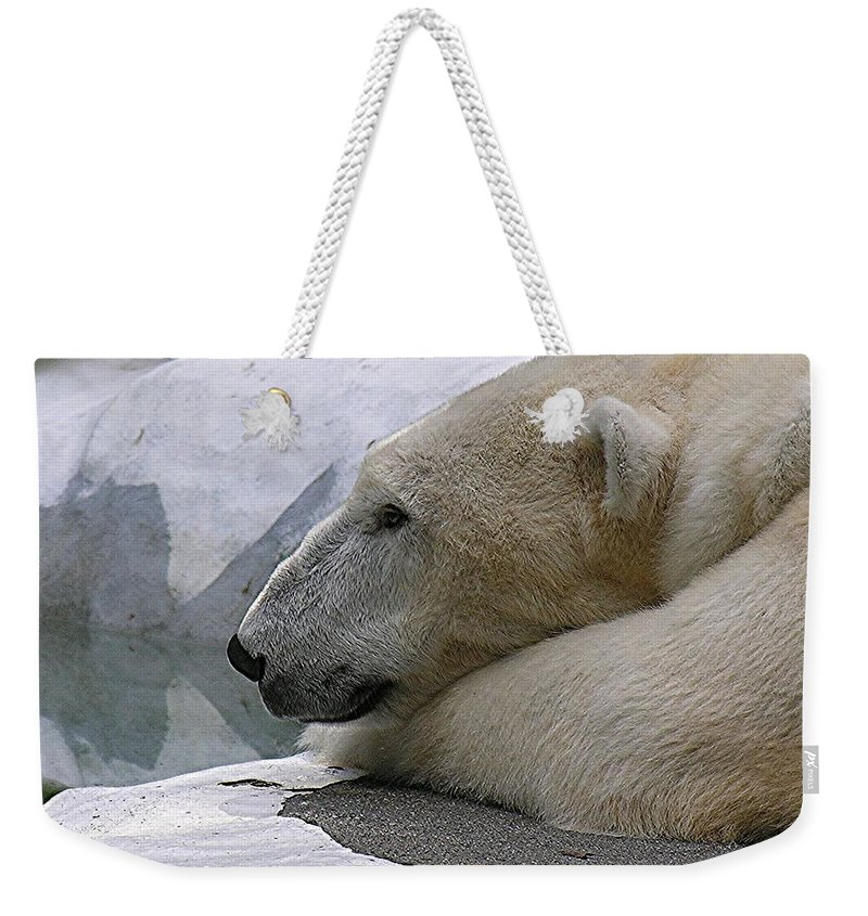 Pola Weekender Tote Bag featuring the photograph Pondering Pola by Diane Greco-Lesser