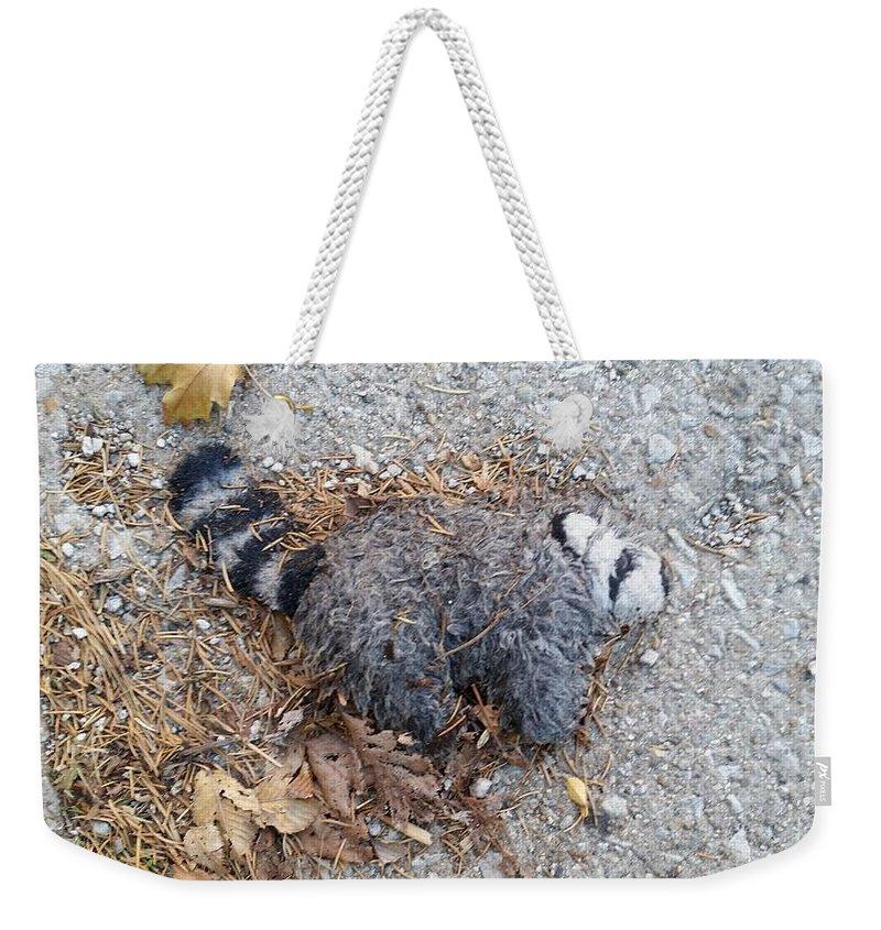 Weekender Tote Bag featuring the photograph Poor Trash Panda by Zac AlleyWalker Lowing