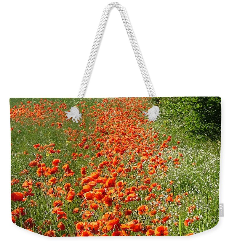 Poppies Weekender Tote Bag featuring the photograph Poppies Awash by Bob Kemp