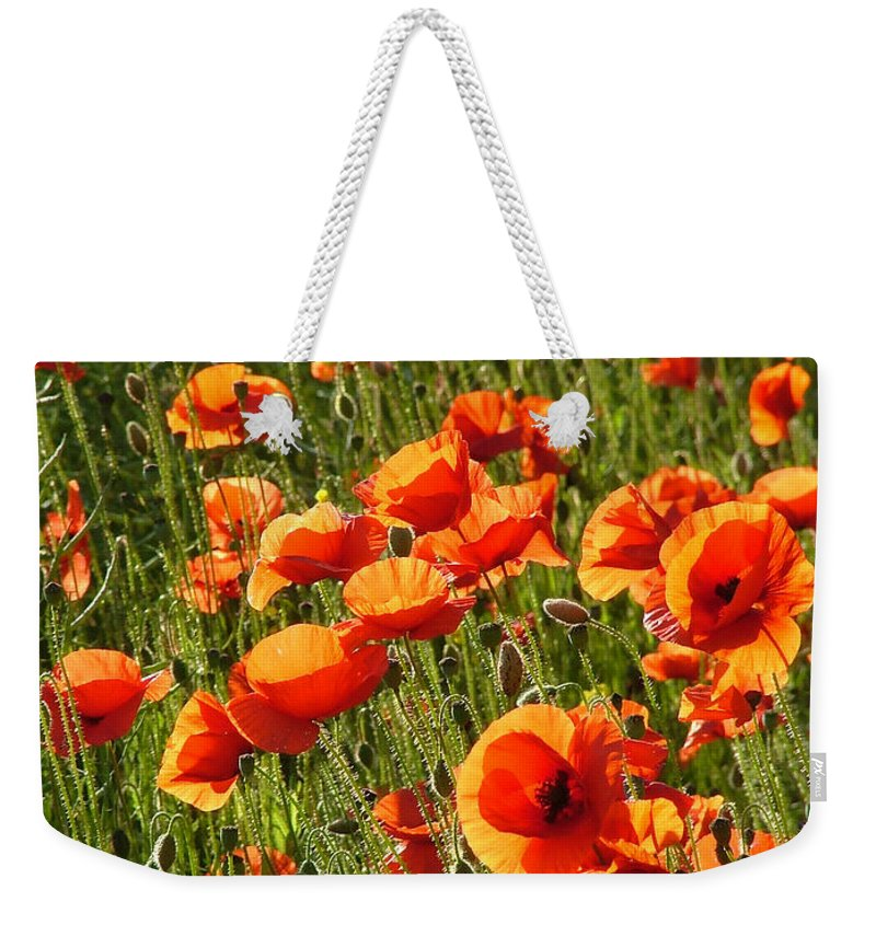 Poppies Weekender Tote Bag featuring the photograph Poppies by Bob Kemp