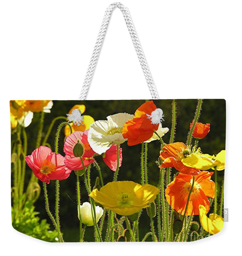 Poppy Weekender Tote Bag featuring the photograph Poppies by Diane Greco-Lesser