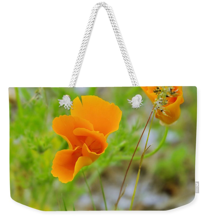 Wildflowers Weekender Tote Bag featuring the photograph Poppies In The Wind by Jeff Swan