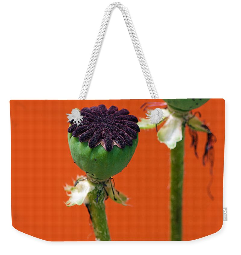 Interior Design Weekender Tote Bag featuring the photograph Poppies On Orange by Lisa Knechtel