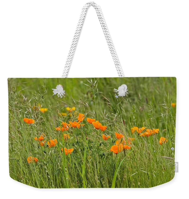 Floral Weekender Tote Bag featuring the photograph Poppies by Randall Ingalls